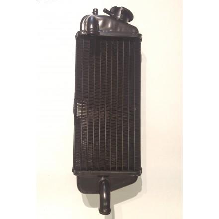 Radiatore destro Beta RR 50 2T dal 1999 al 2018