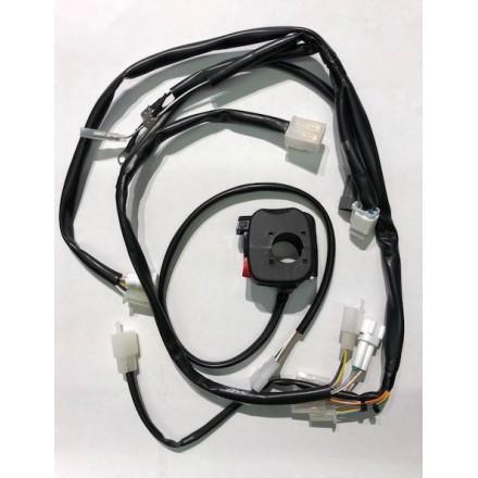 Kit impianto elettrico semplificato con avviamento elettrico Beta RR 2T 2013/2018 RR 4T 2010/2015