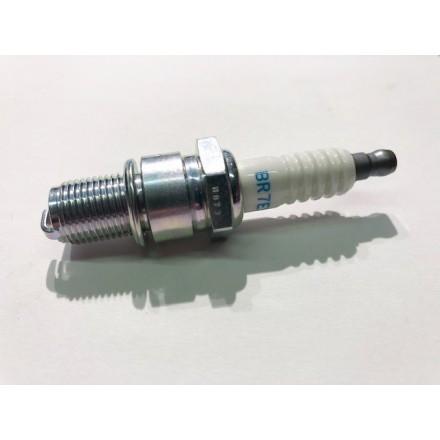 Candela Beta RR 300 2T 13/14 - 18/19 NGK BR7ES