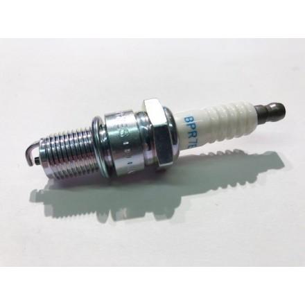 Candela Beta RR 300 2T 15/17 - Trial EVO 2T 250-300 15/16 NGK BPR7ES
